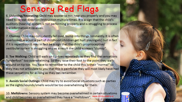 Sensory Red Flags