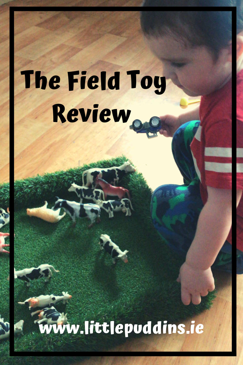 the-field-toy-review